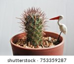 a cute items and a small cactus | Shutterstock . vector #753359287