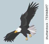 bald eagle   bird | Shutterstock .eps vector #753468697