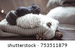 knitted sweater with balls of...   Shutterstock . vector #753511879
