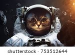 brave cat astronaut at the... | Shutterstock . vector #753512644