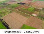 aerial view .rows of corn field ... | Shutterstock . vector #753522991