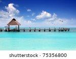 Caribbean Tropical Beach Cabin...