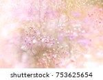 grass flower field in spring... | Shutterstock . vector #753625654