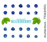 vector set of a fresh blueberry