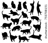 Stock vector set vector silhouettes of the cat different poses standing jumping and sitting black color 753708151