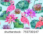 pink lotus  tropical flowers ... | Shutterstock .eps vector #753730147