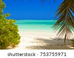 tropical maldives island  ... | Shutterstock . vector #753755971