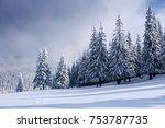 fantastic winter landscape with ... | Shutterstock . vector #753787735