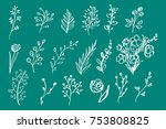 hand drawn vintage floral... | Shutterstock .eps vector #753808825