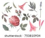 watercolor set vintage flowers...   Shutterstock . vector #753810934