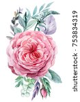 flowers roses and leaves ... | Shutterstock . vector #753834319