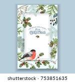 vector vintage christmas frame... | Shutterstock .eps vector #753851635