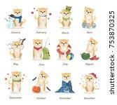 Shiba Inu Calendar With All...