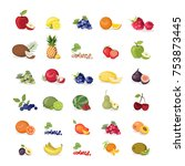 fruits illustrations set on... | Shutterstock . vector #753873445