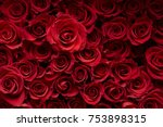 Stock photo red rose background 753898315