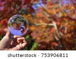 Red Autumn In Crystal Ball
