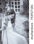 beautiful girl in dress  riding ... | Shutterstock . vector #753927181