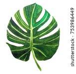 illustration watercolor green... | Shutterstock . vector #753986449