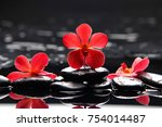 still life with red orchid with ... | Shutterstock . vector #754014487