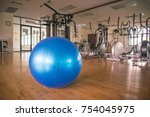 exercise blue color ball in... | Shutterstock . vector #754045975
