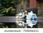 thai spa massage compress balls ... | Shutterstock . vector #754046311