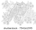 coloring page of two parrots in ... | Shutterstock .eps vector #754161595