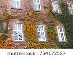 in the photo you see a fragment ... | Shutterstock . vector #754172527
