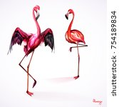 illustration of two flamingo.... | Shutterstock .eps vector #754189834