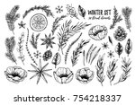 vector illustrations   winter... | Shutterstock .eps vector #754218337