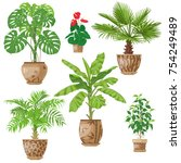 potted tropical plants set. ...
