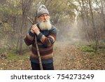 cheerful old man enjoying walk...   Shutterstock . vector #754273249