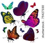 set of color butterflies of... | Shutterstock .eps vector #75427330