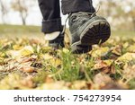 men's shoes in autumn leaves. a ... | Shutterstock . vector #754273954