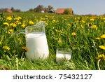 Jug of milk on the spring meadow. Emmental region, Switzerland - stock photo