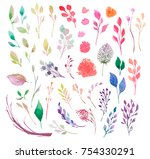 set of watercolor flowers ... | Shutterstock . vector #754330291