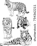 set of vector drawings on the... | Shutterstock .eps vector #754362211