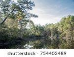 de soto national park   Shutterstock . vector #754402489