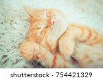 little red kitten. cute little... | Shutterstock . vector #754421329