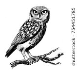owl on a tree | Shutterstock . vector #754451785