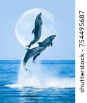 group of dolphins jumping on... | Shutterstock . vector #754495687