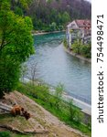 Small photo of Scenic View of Aare River with Bear of Bern under Giant Tree, View of the Old City of Bern from The Stone Bridge, over Aare river, Switzerland.