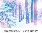 winter beautiful landscape with ...   Shutterstock . vector #754510459