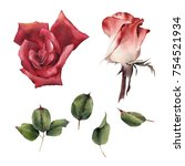 roses and leaves  watercolor ... | Shutterstock . vector #754521934