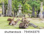 deers at todai ji temple in...   Shutterstock . vector #754543375