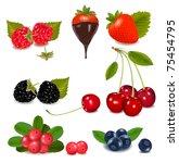 group of cranberries ... | Shutterstock .eps vector #75454795