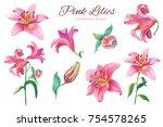 pink lilies.floral set... | Shutterstock . vector #754578265