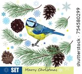 christmas set. titmouse  pine... | Shutterstock .eps vector #754580299