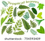 set of green leaves isolated on ... | Shutterstock .eps vector #754593409