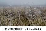 the dry grass is covered with... | Shutterstock . vector #754610161