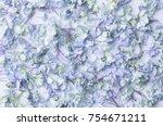 dry blue hydrangea flower... | Shutterstock . vector #754671211